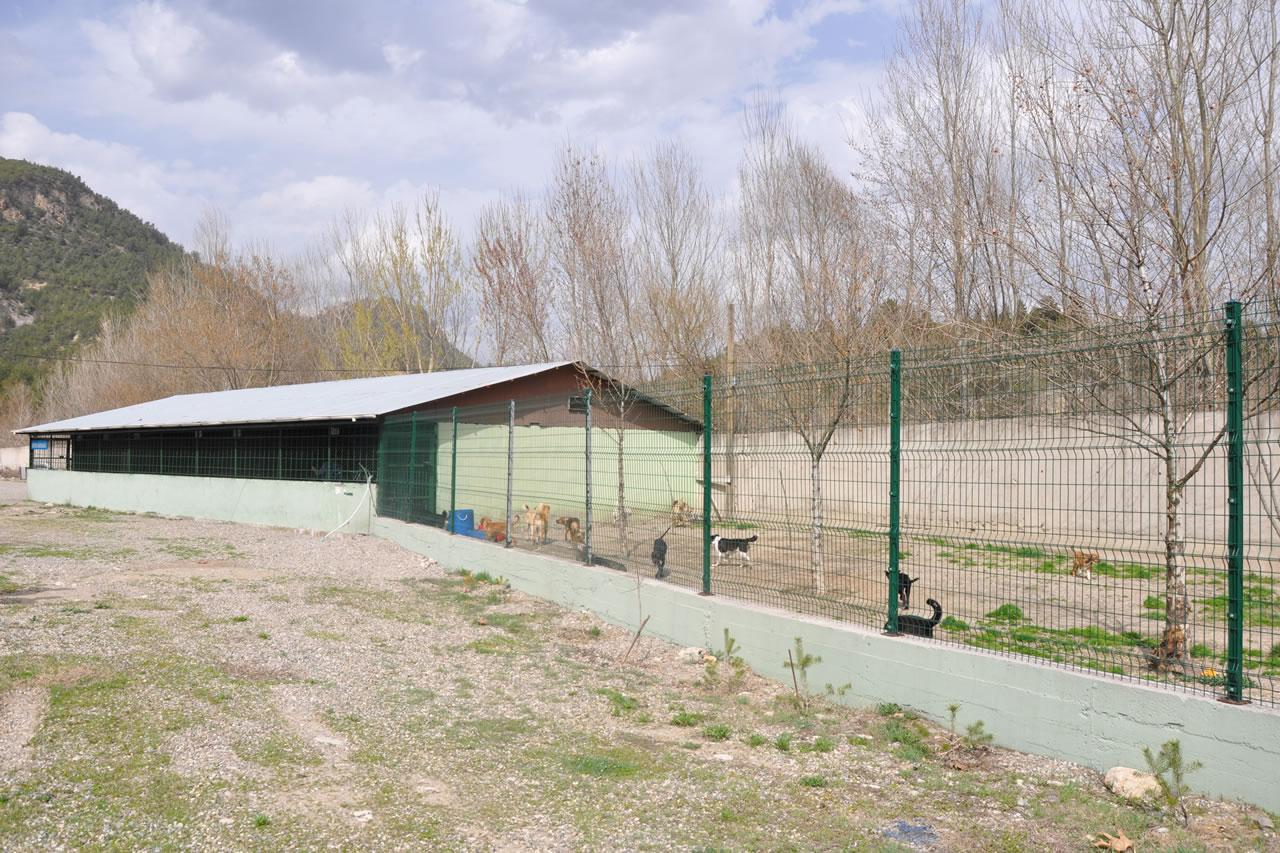 Hayvan Barınağı ve Rehabilitasyon Merkezi