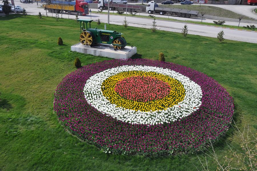 Karabük - Safranbolu Çevre Yolunun Yeşillendirilmesi