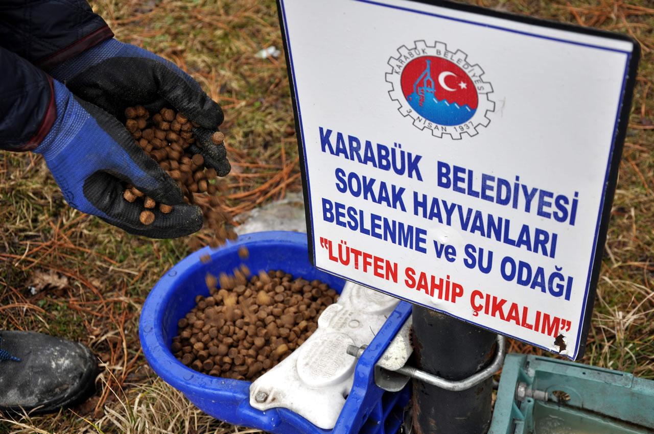 Karabük Belediyesi Sokak Hayvanlarını Ramazan Bayramında da Unutmadı