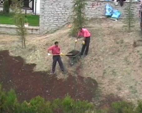 Çimlendirme ve Ağaçlandırma Çalışmaları