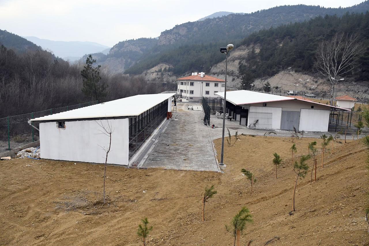 Hayvan Barınağı ve Hayvan Hastanesi Projesi